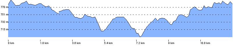 Streckenprofil (Bild: google maps)
