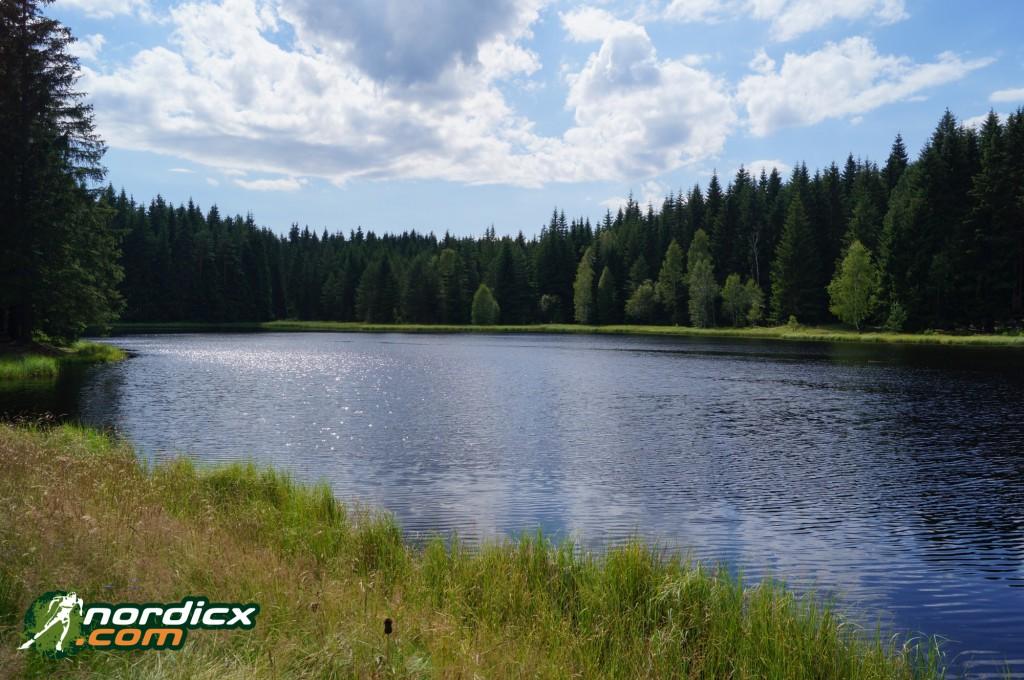 Waldsee auf der Skiroller-Tour